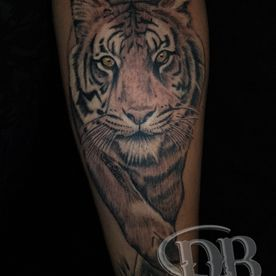 BLACK AND GREY,TIJGER,TIGER,JAPANS,JAPANESE,REALISTISCH,REALISTIC,TATTOO,TATOEAGE